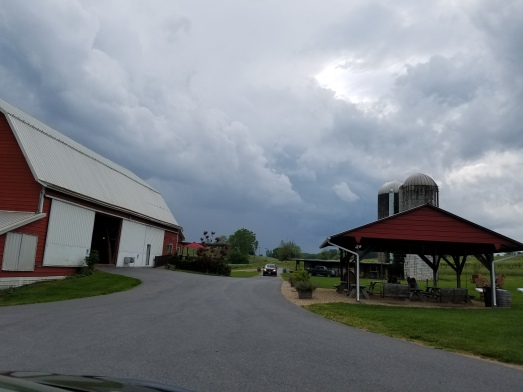 Storms rolling in at the winery